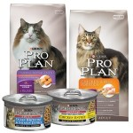 Cat food ProPlan: review and feedback